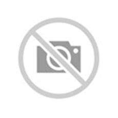 Pirelli PZEROSILVER opona